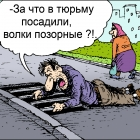 502eb1f73f49e0.51745182V_tyurmu_posadili